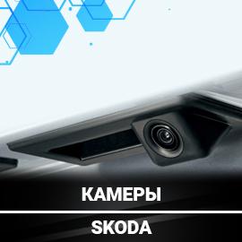 Штатные камеры для IШкода AudioSources