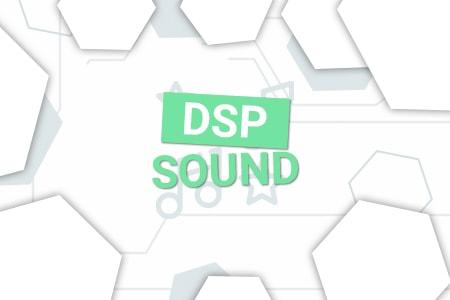 Высококачественный DSP звук Skoda Octavia A5; Yeti;